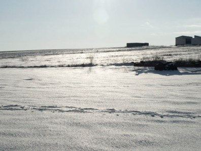 Gran Nevada Diciembre 2009