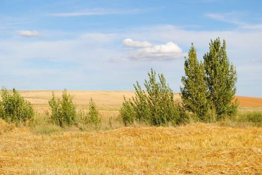 167 Y mas alla, el horizonte Santa Cristina de Valmadrigal