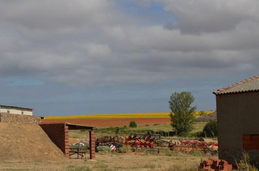 054 - Horizonte amarillo