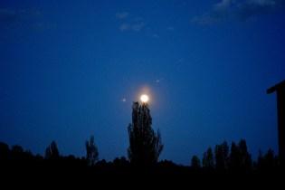 073 - La luna del Caño Abandona Lentamente su Nido