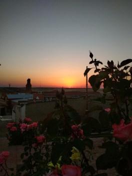 Puesta de Sol entre Rosales