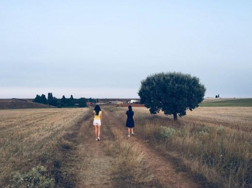 Camino a Dos Hermanas