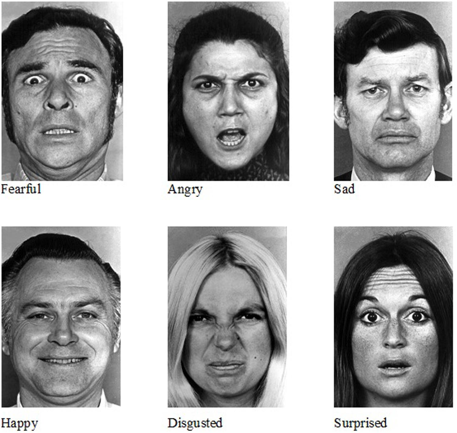 Introduction To Facial Emotion Recognition