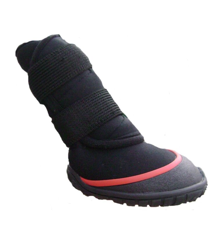 What Kind of Dog Snow Boots Should You Buy?