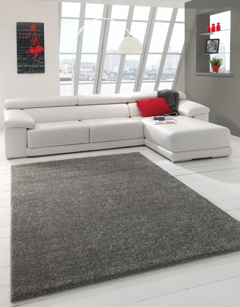 grand-tapis-de-salon-gris