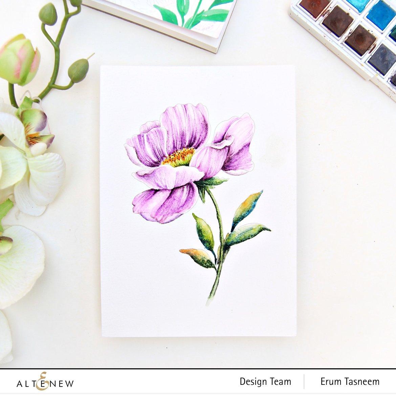 Altenew Coloring Book + 36 Pan Watercolor Set   Erum Tasneem   @pr0digy0