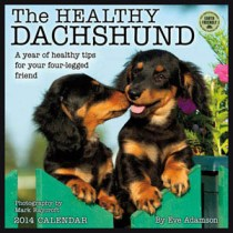 The Healthy Dachshund