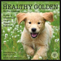 The Healthy Golden