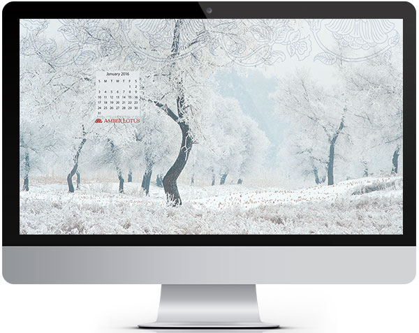 Free Desktop Wallpaper January 2016