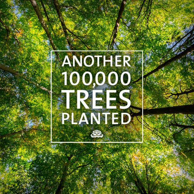 100000 trees planted