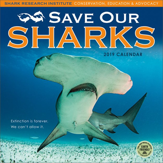 Save Our Sharks 2019 Wall Calendar
