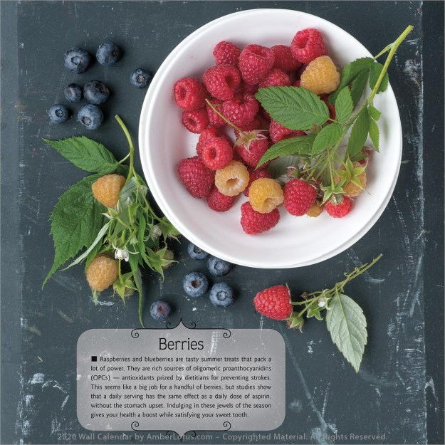 Super Foods 2020 wall calendar