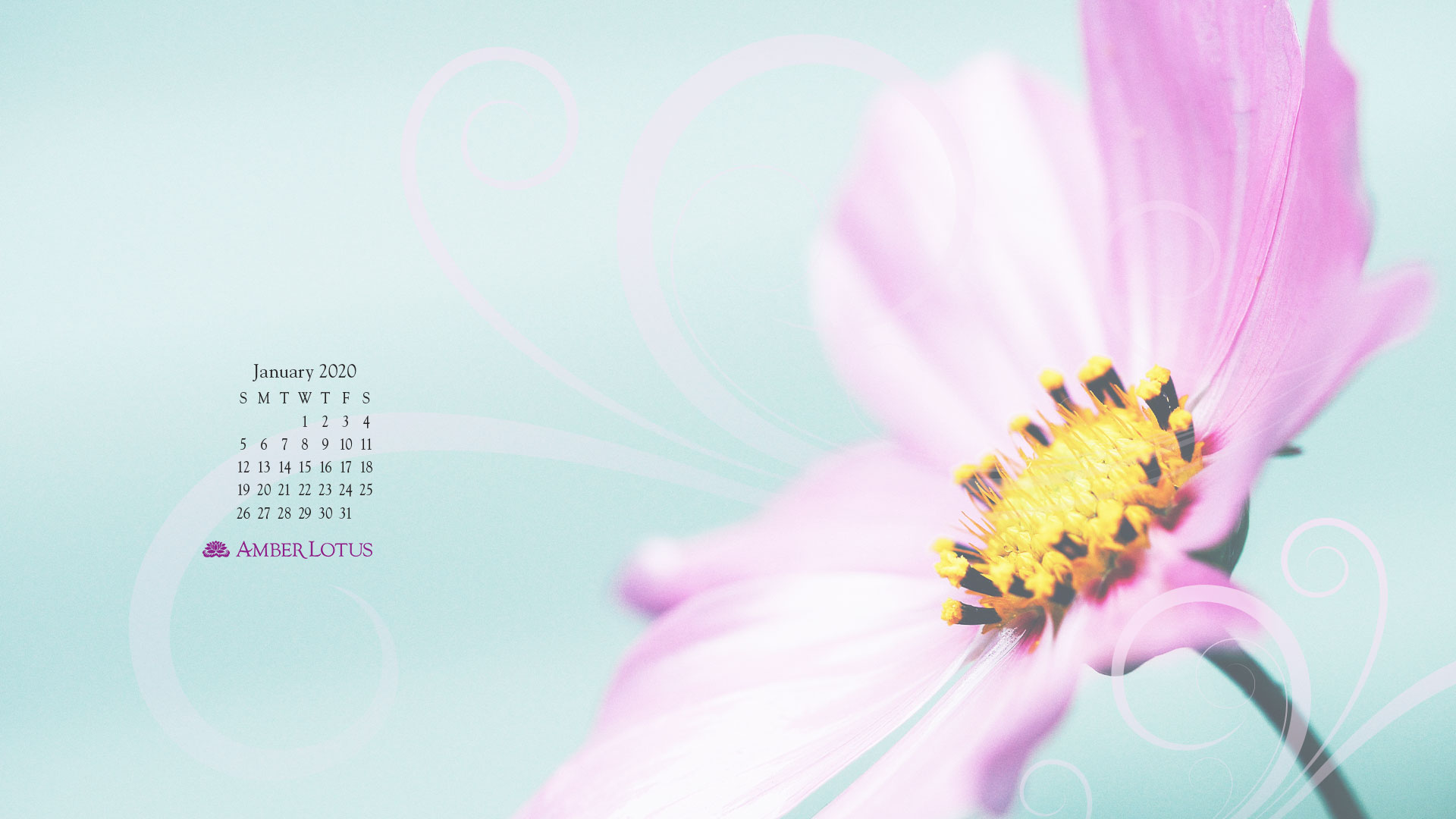 Desktop Wallpaper Calendar January 2020 Free To Download