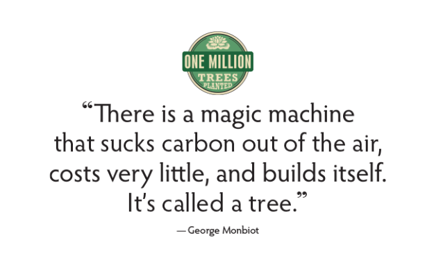 There is a magic machine that sucks carbon out of the air, costs very little, and builds itself. It's called a tree. — George Monbiot