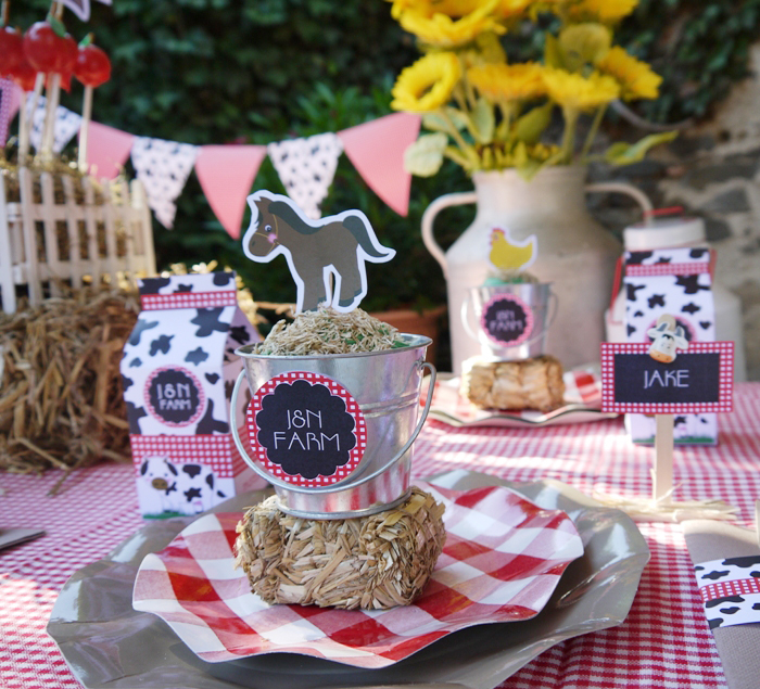 Barnyard Birthday - Kid's Table Setting