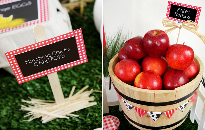 Barnyard Birthday Kids Parties apples