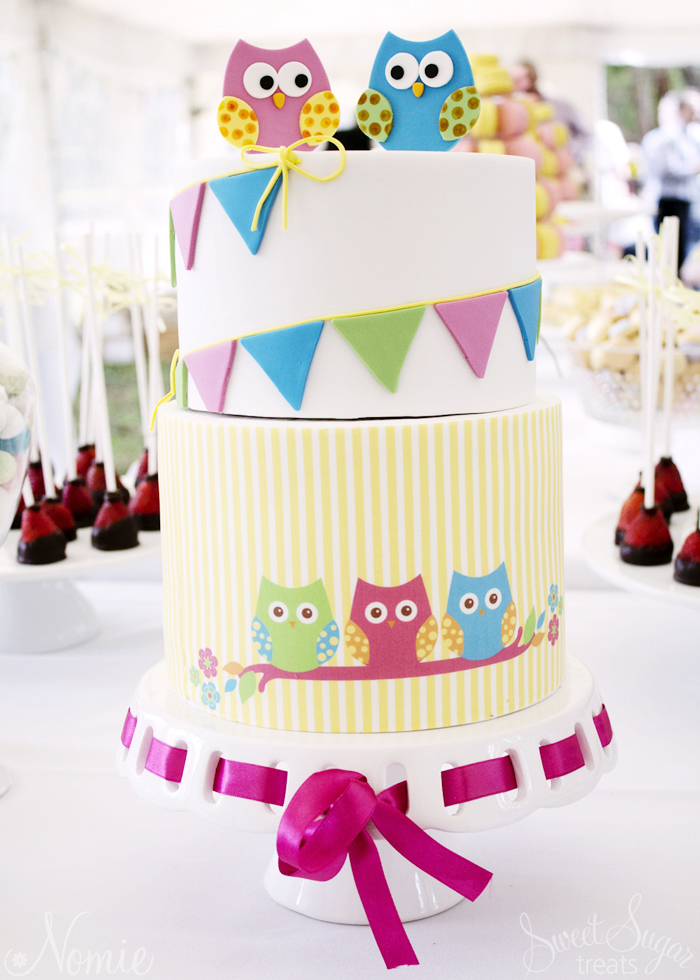 Owl Themed Dessert Table | Owl Cake