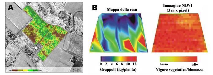 Mappe tematiche riguardanti la resa delle colture ottenute con immagini multispettrali