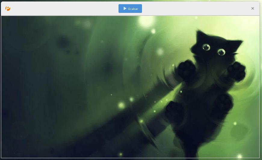 Grabar la pantalla como GIF en Linux con peek