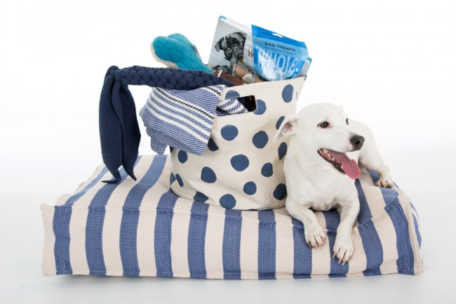 How To Make A Holiday Gift Basket For Dog Lovers