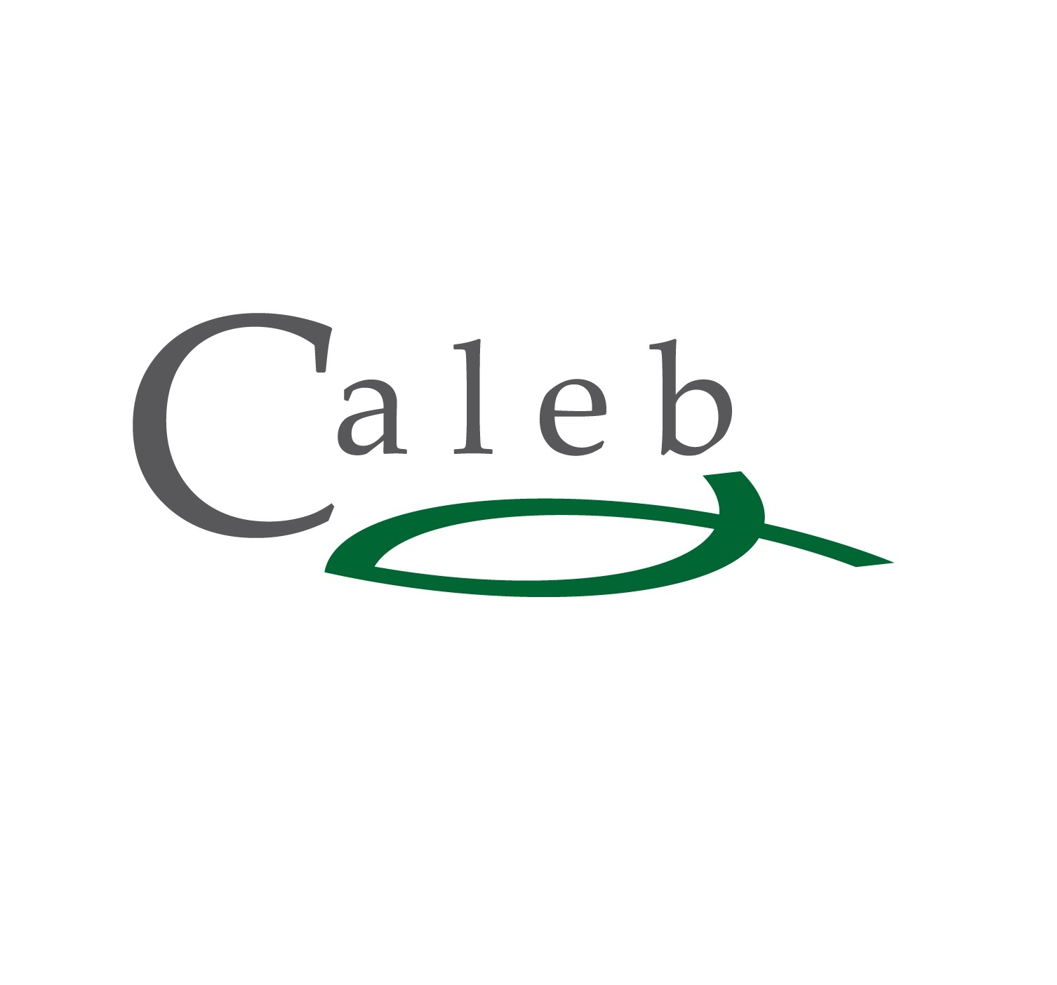 Caleb Management Services, Sustainable Chemistry