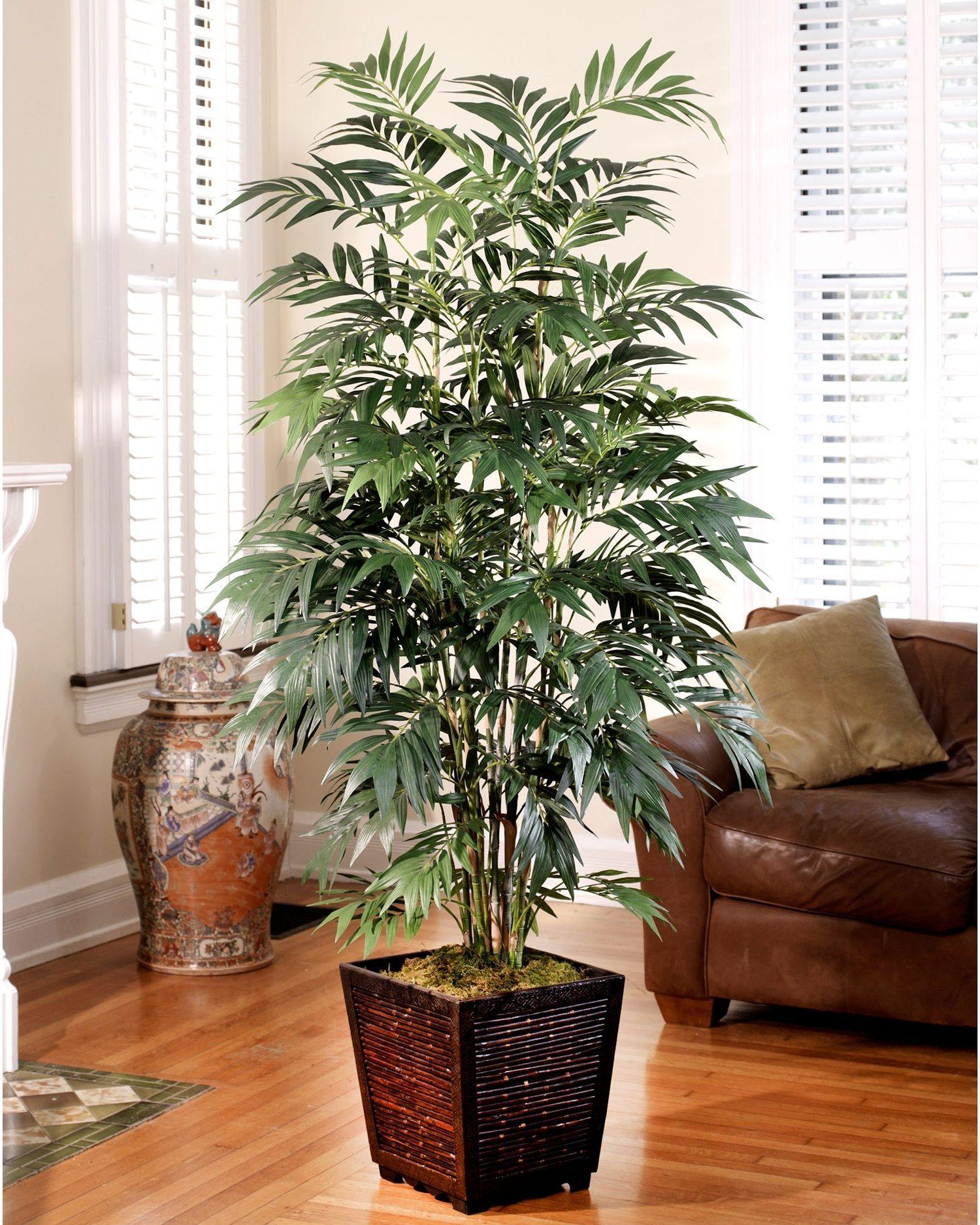 Palm Tree Home Decor