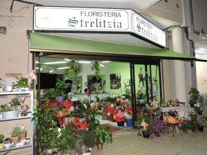 Floristería Strelitzia