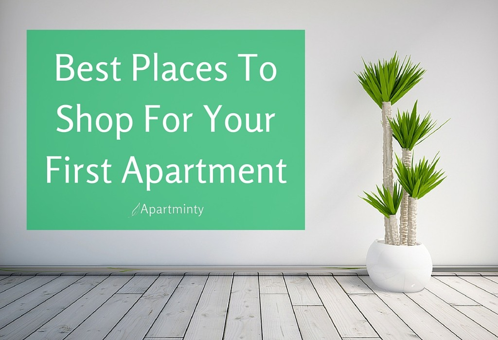 Moving Into Your First Apartment  Apartminty