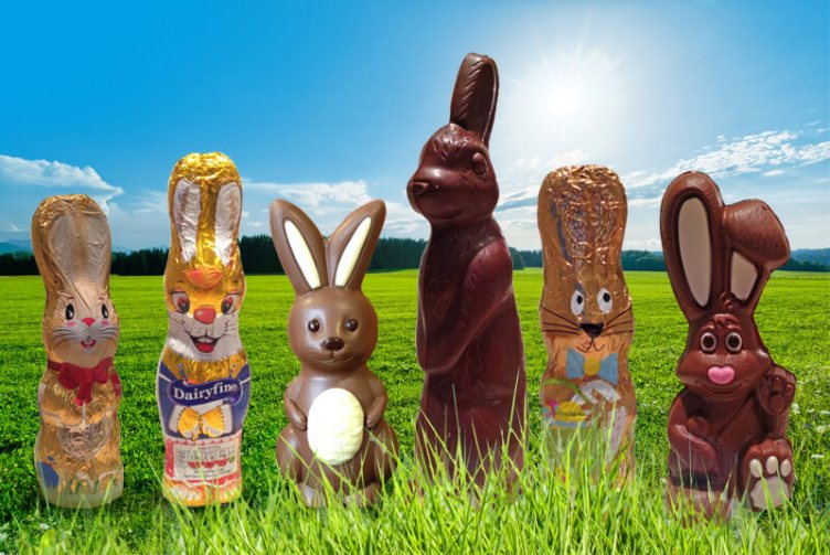 The choccy bunnies are coming... but which one's got your name on it?