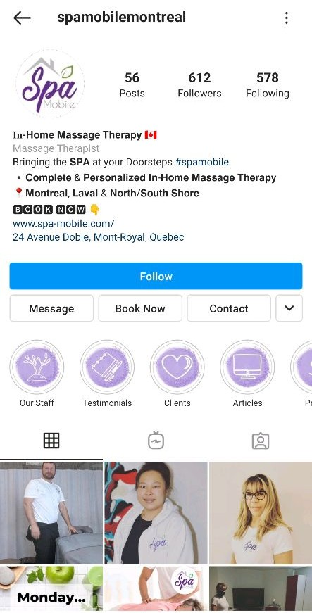 Spa Instagram profile with Book Now button