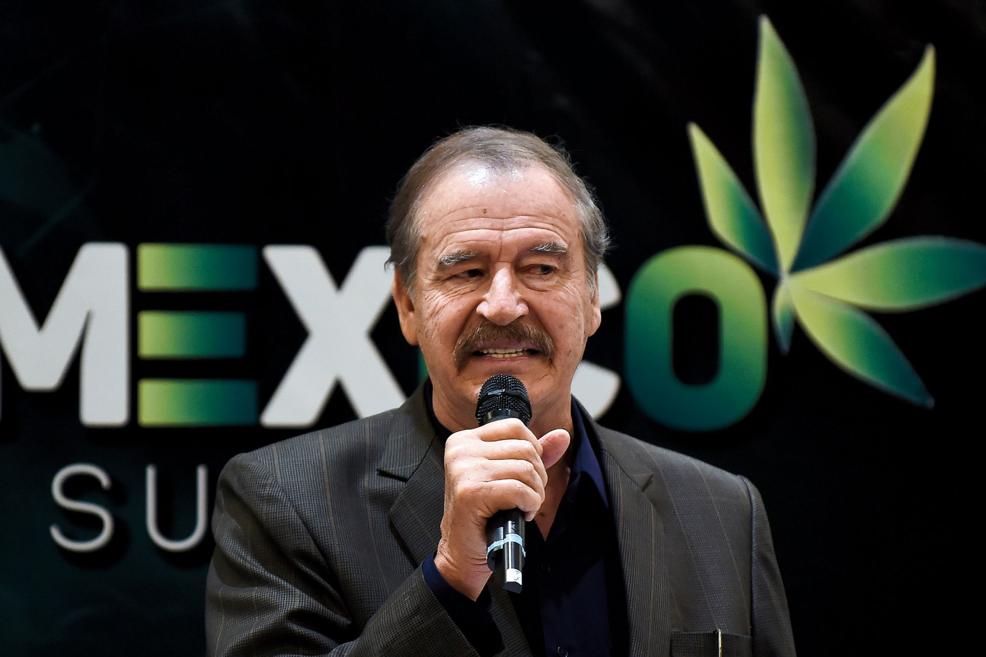 President Vicente Fox Wants To Legalize Cannabis