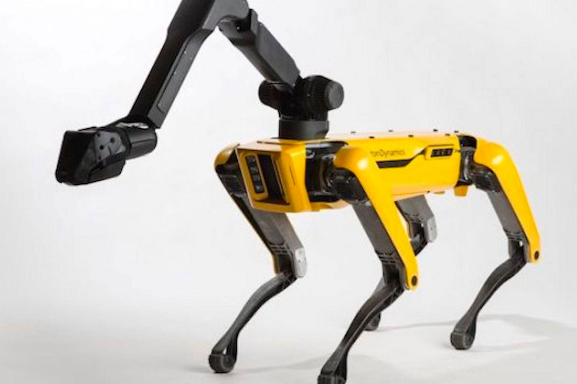 Spot Robot Dog Helps Doctors Remotely Triage COVID-19 Patients