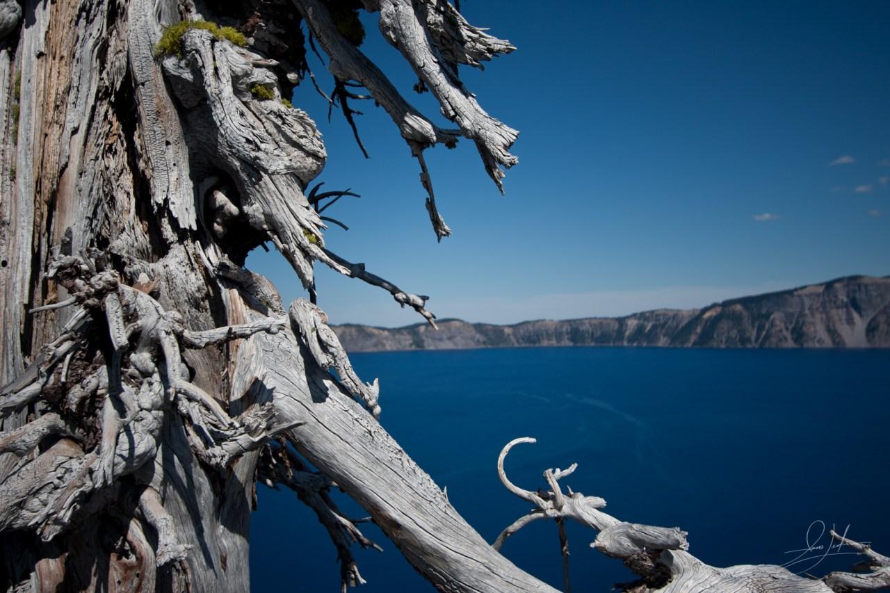 2009-08-23 - Crater Lake National Park-IMG_1988