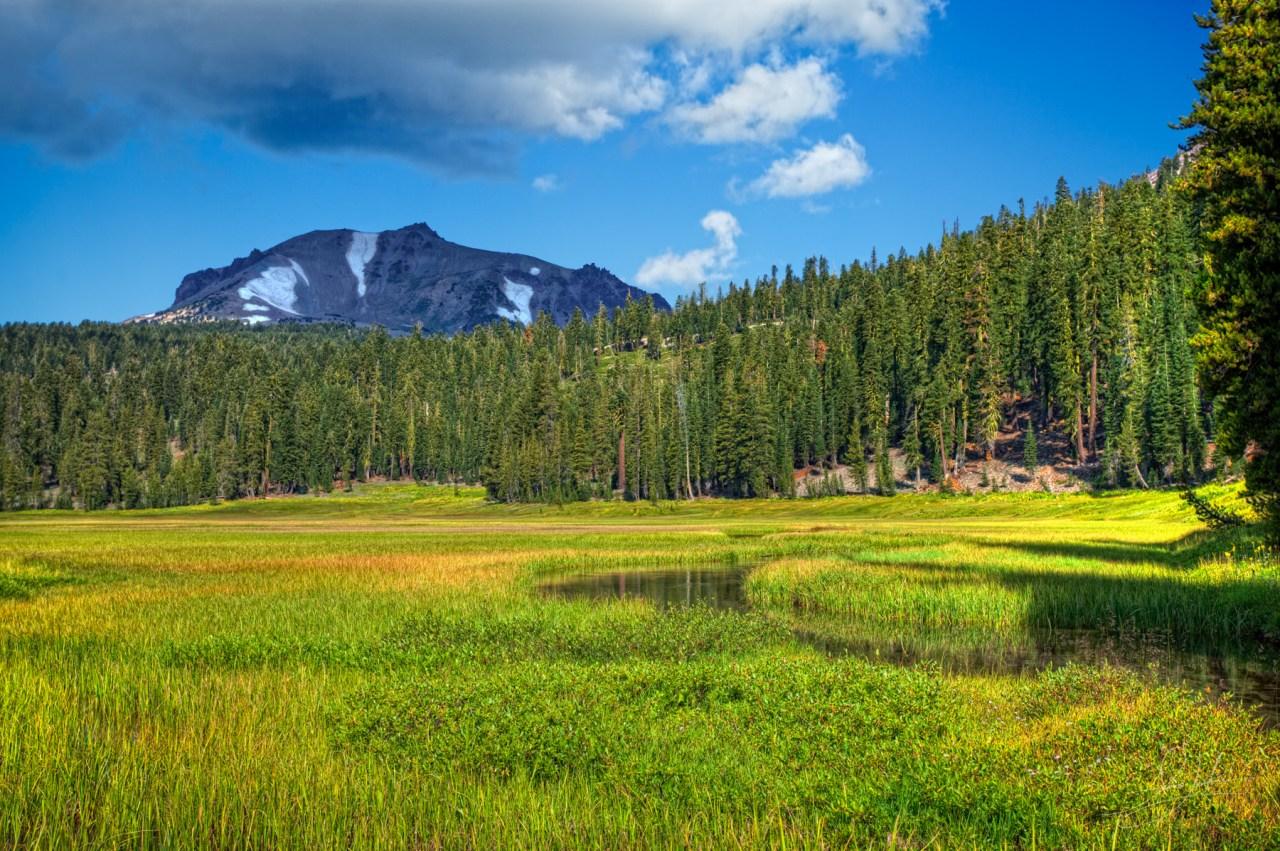 Lassen Volcanic National Park Feild