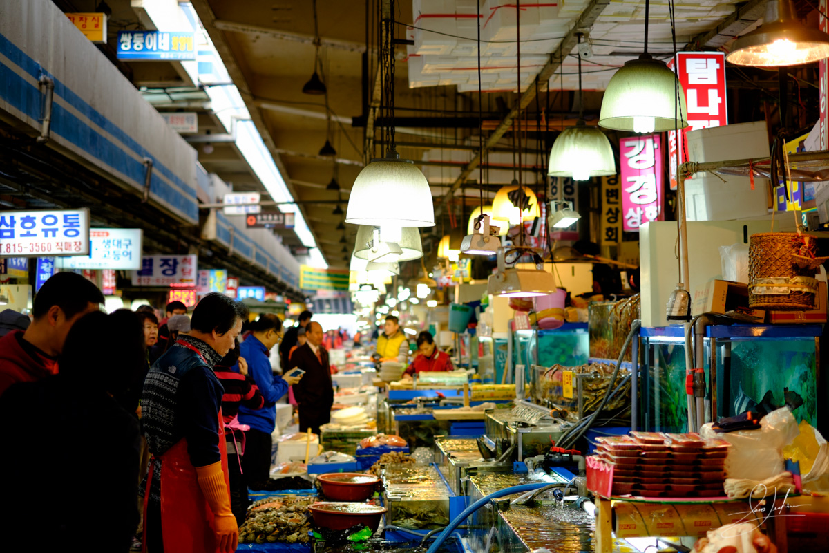 20150417-The Streets Of Seoul Fish Market-1153