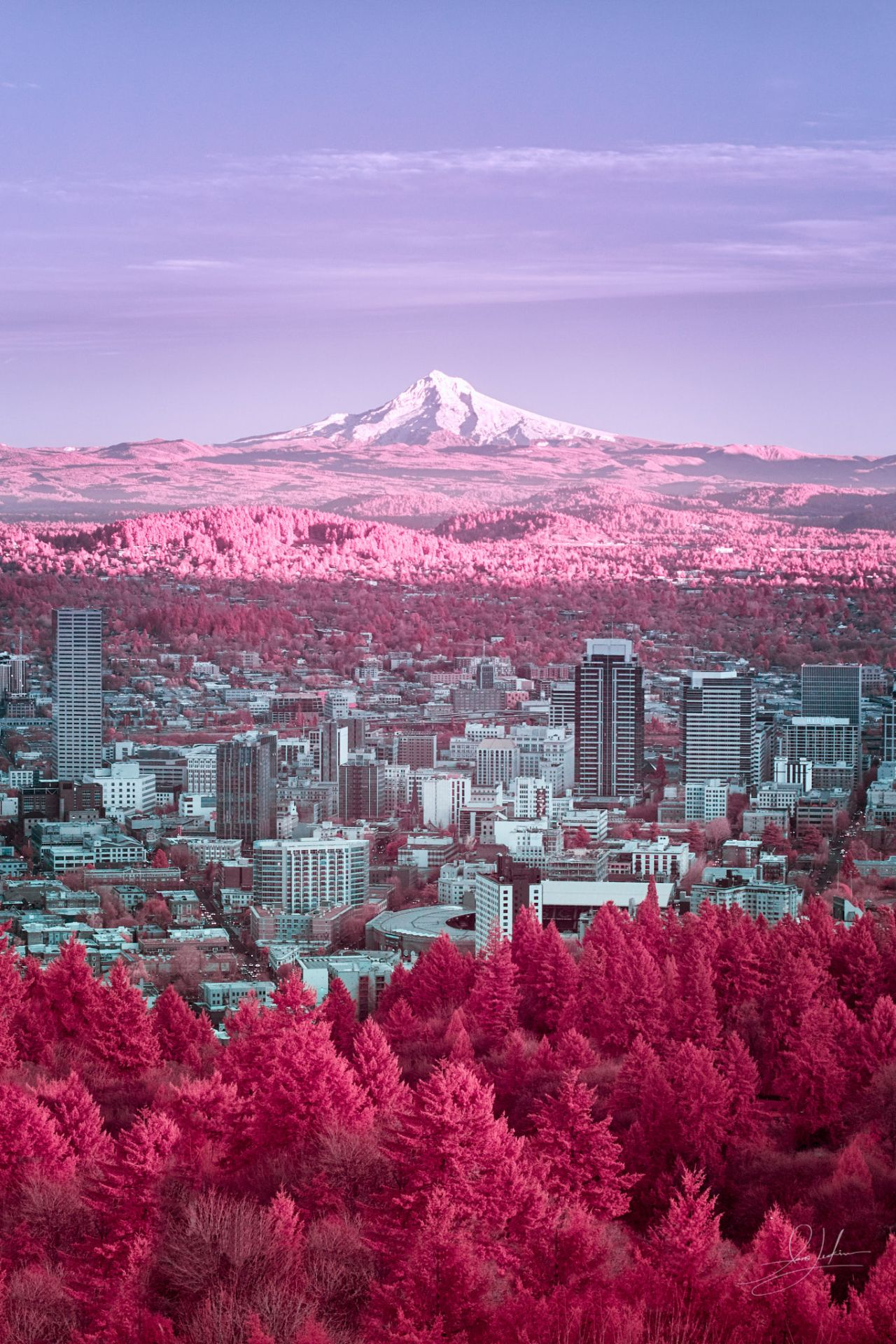 Mt.Hood From Pittock Mansion - Portland, Oregon