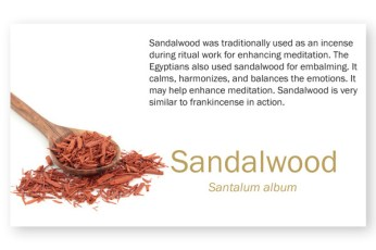 Sandalwood EO Spotlight