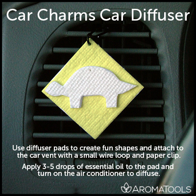 Homemade Car Diffuser