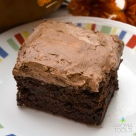 Sweet Potato Cinnamon Brownies