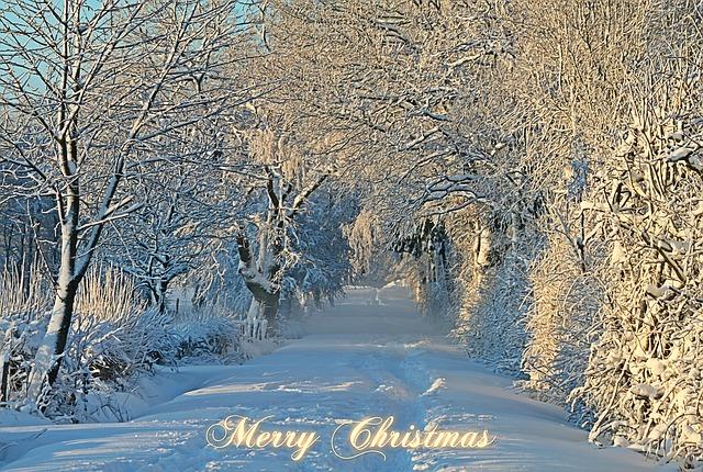 christmas-1060532_640