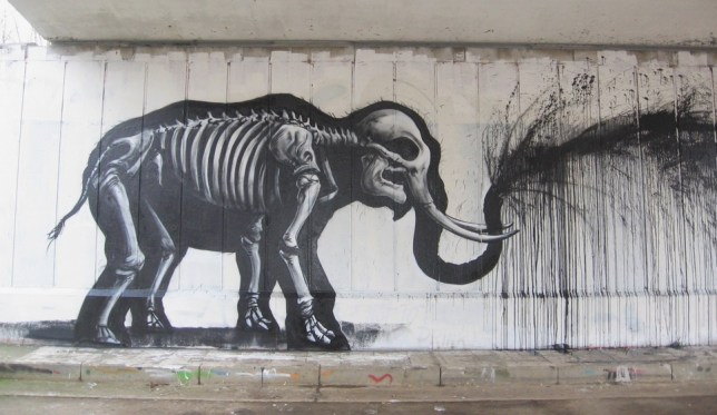 Roa elephant drips black