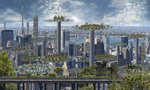 10.Manhattan-farms-III-(2)