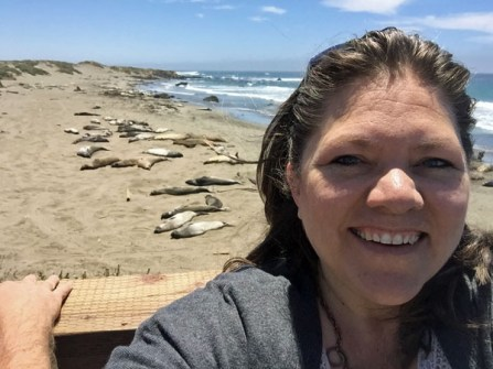 A Selfie with the Elephant Seals