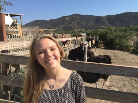 On the Ostrich Farm
