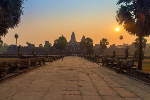 The Real Cambodian Jungle   ASAP Tickets Travel Blog