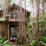 Inspired Homes A Tiny Treehouse On The Big Island The