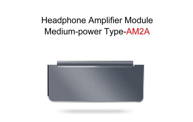 Une alternative au FiiO AM2, ce module d'amplification utilise une puce muse plutôt que TI.