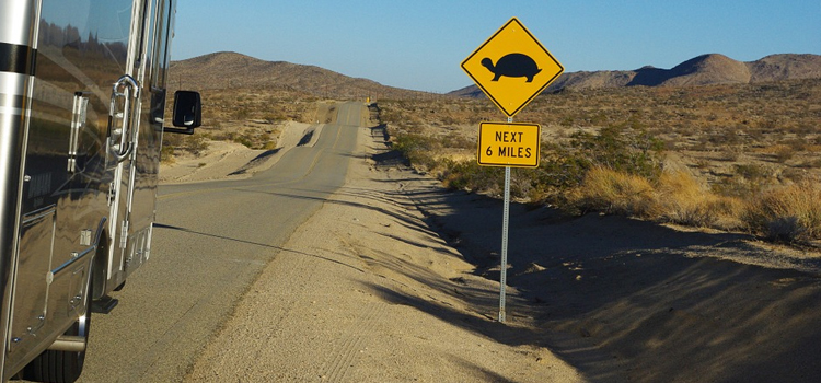 go rving reasons, reasons to not put off rving, picture of a motorhome driving down a desert road with a turtle crossing sign, go rving
