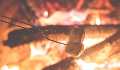 ohio camping, picture of marshmellows roasting on a camp fire