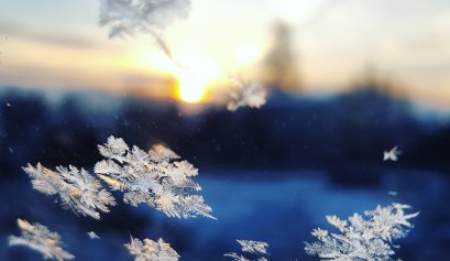 Snow flakes in the winter at sun rise